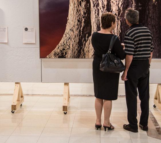 Controversial Art art