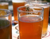 Beer excercise